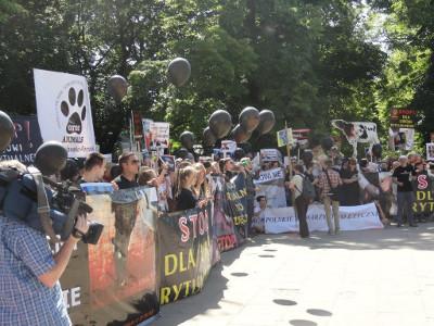 Zdjęcie z protestów pod sejmem, przedstawia tłum z transparentami nawołującymi do zaprzestania uboju rytualnego.